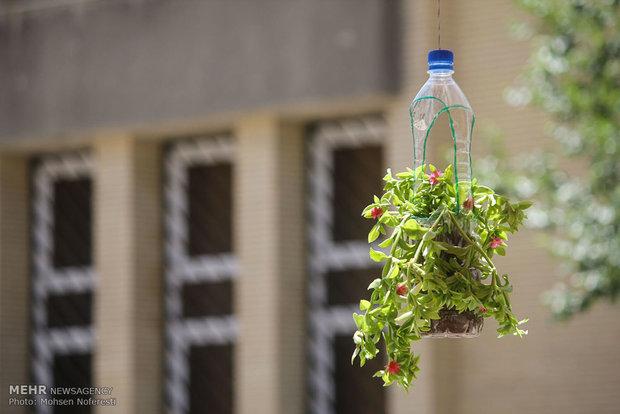 زنگ بازیافت در سطح مدارس غرب تهران به صدا در می آید