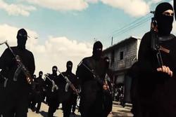 داعش به شێوازێكى نوێ چهكى كیمیایى بهكار دههێنێت
