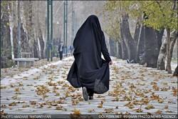 ہالینڈ کے عوامی مقامات پر خواتین کے برقعہ پہننے پر پابندی