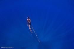 شکار کوسه در ماداگاسکار