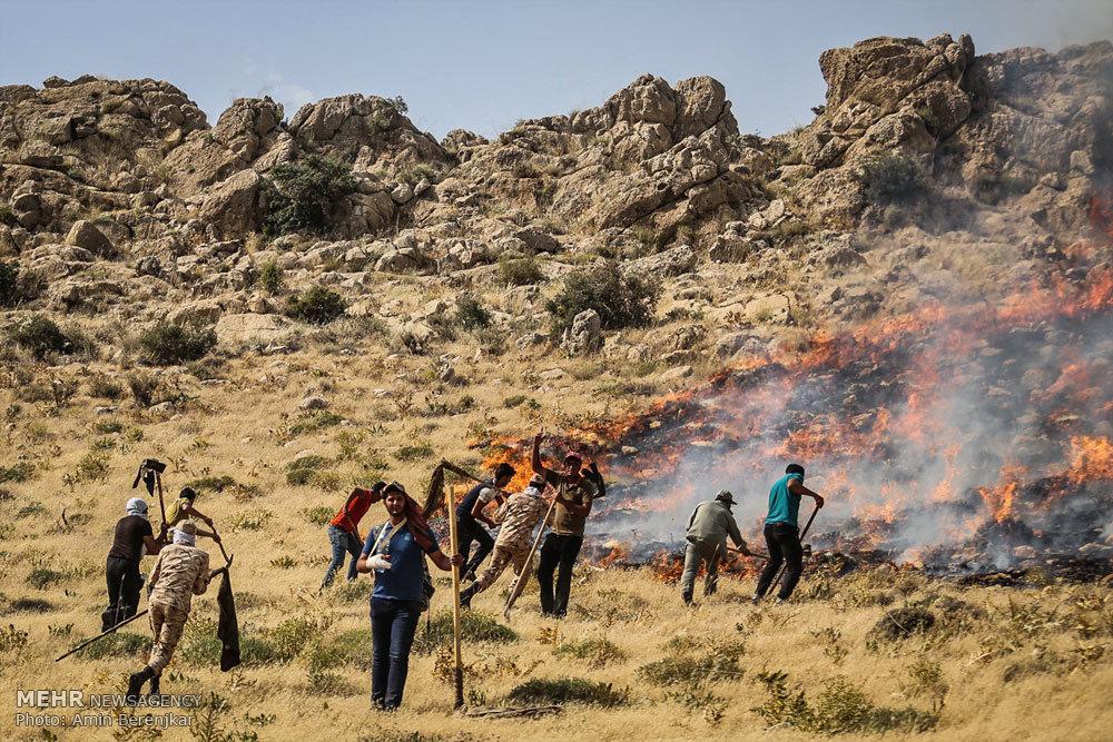 آتش سوزی در پارک ملی بمو