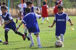 آمادگی ورزشگاه شهدای گمنام برای استقرار آکادمی فوتبال پرسپولیس