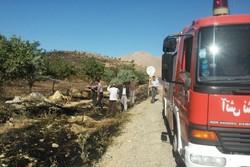 وقوع ۹ مورد حریق مراتع و پوشش گیاهی طی یک روز در همدان