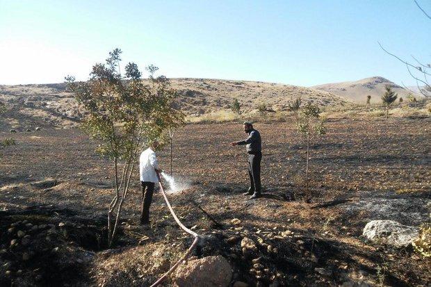 مهار آتش سوزی مراتع در مراغه/ ۴ هکتار از اراضی در آتش سوخت