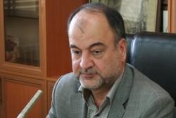 ۹۰ درصد دامهای سنگین شمال کرمان هویت گذاری شدند/ لزوم اجرای دقیق آئین نامه مبارزه با قاچاق دام