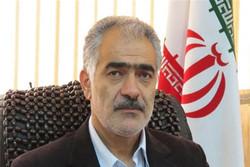 رضا گل محمدی مدیرکل ورزش و جوانان استان تهران