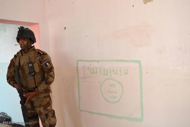 دخول القوات العراقية الى مدينة الفلوجة