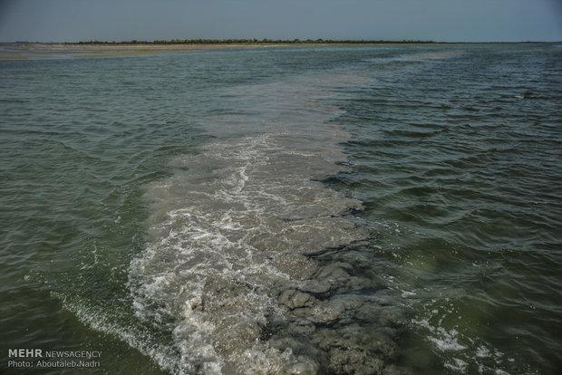 شرایط آب گرگان رود ثابت است