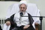 پاکستان کے ممتاز علماء کی شیعہ مسلمانوں کو انتخابات میں شرکت کی دعوت معتبر/ ووٹ شیعوں کی طاقت کا مظہر