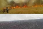 گندمهایی که به جای نان خاکستر می شوند/ آتش بر جان مزارع «هرسم»