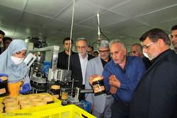 محصولات تولیدی در هرمزگان مورد حمایت مردم و مسئولان قرار گیرد