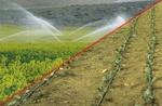 توصیه های ۶ روزه هواشناسی کشاورزی