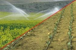 برنامهریزی برای ارتقا تدریجی راندمان مصرف آب کشاورزی در اردبیل
