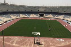 چمن ورزشگاه آزادی