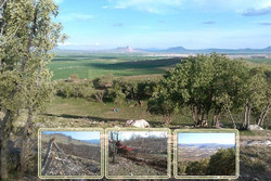 اجرای طرح ممیزی در چهار میلیون و ۸۰۰ هزار هکتار مراتع استان سمنان