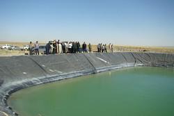 ۶۱ هزار هکتار از اراضی کشاورزی امسال به آبیاری نوین مجهز می شوند