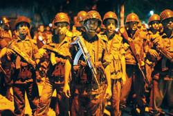 دلایل نفوذ داعش در شبه قاره/ لزوم توجه به امنیت انسانی