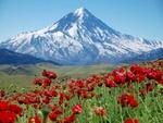 قله دماوند مقصد گردشگران ملی و بین المللی است