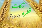 میزان فطریه از سوی مراجع تقلید اعلام شد/ تکلیف میهمان شب عید