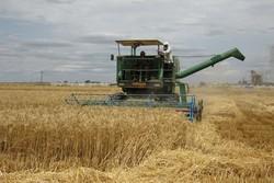 خرید ۱۰ هزار دستگاه ماشین آلات کشاورزی در خراسان رضوی طی ۶ سال