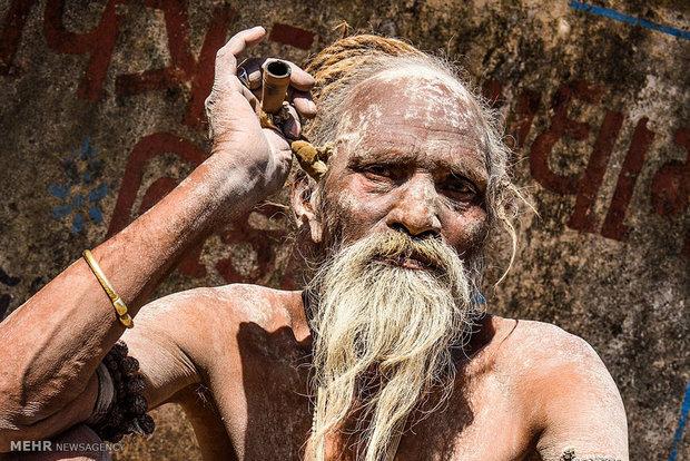 جشنواره ماها شیواراتری در هند