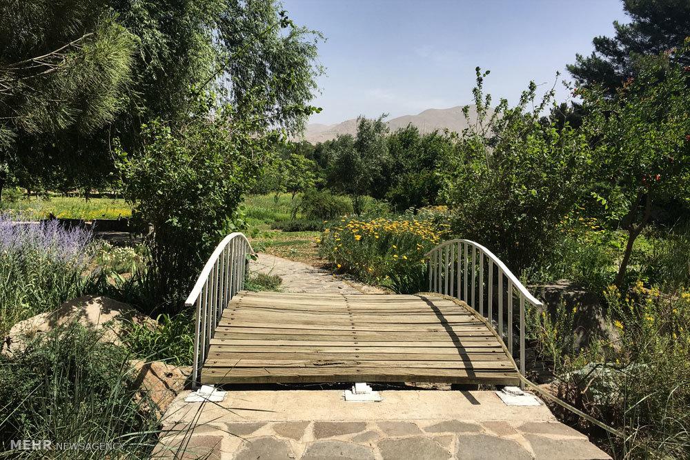 باغ موزه گیاه شناسی