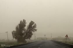 مدارس شهرستان هیرمند به دلیل طوفان گرد و خاک تعطیل اعلام شد