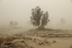 غلظت ذرات معلق هوای زاهدان ۲۲ برابر حد مجاز/طوفان فروکش کرد