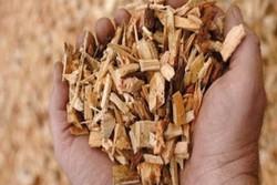 بخاری با منبع سوخت طبیعی برای نقاط محروم تجاری سازی می شود