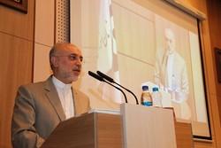 صالحي: حزب الله حطم أسطورة الكيان الصهيوني