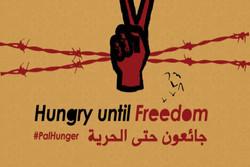 تعداد اسرای فلسطینی اعتصاب کننده از غذا از مرز ۱۵۸۰ نفر گذشت/ برگزاری تظاهرات «روز خشم» در روز جمعه
