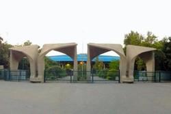 رئیس پردیس هنرهای زیبا دانشگاه تهران معرفی شد