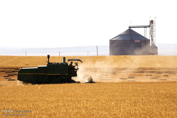Wheat self-sufficiency ratio to reach 110%