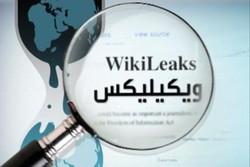 اعتقال مساعد مؤسس موقع ويكيليكس بعد محاولة فراره