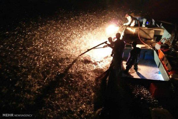 پاکستان کے ساحلی علاقہ میں مچھیروں کی کشتی ڈوبنے سے 16 افراد لاپتہ