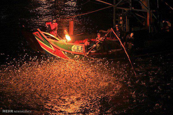 روش عجیب ماهیگیری با آتش