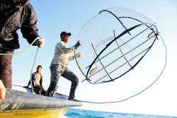 ۷۰۰ نفر در تنکابن تولید سالیانه ۵هزارتن ماهی را برعهده دارند