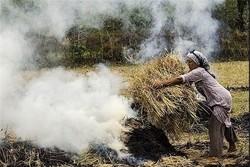 برخورد قاطع با کشاورزان متخلف در شفت/سوزاندن کاه و کُلُش جرم است