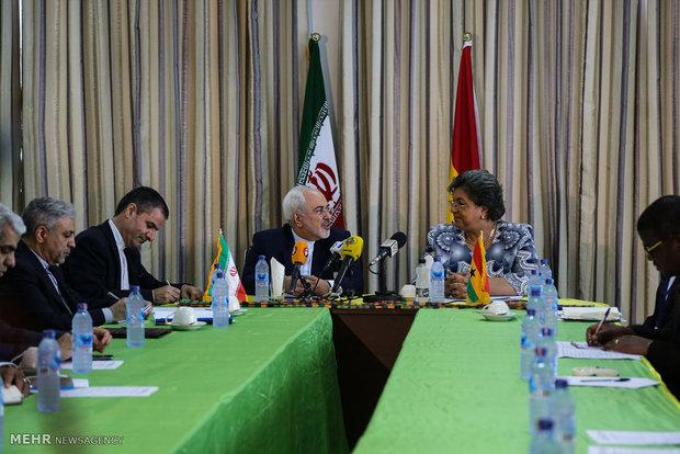 لقاء وزير الخارجية الإيراني بنظيره الغيني