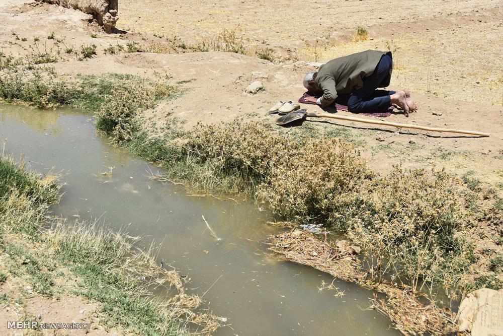 کشاور با ایمان٬ نماز خواندن دهقان٬ نماز خواندن روی زمین کشاورزی٬ نماز خواندن کشاورز٬ نماز خواندن کنار جوی٬ نماز خواندن کنار رودخانه