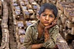 طرحهای کاهش کودکان کار در اردبیل اثربخش نیست
