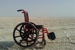 معلولان خسته از ترحم/ «ممدک» شاعری از جنس آزردگی