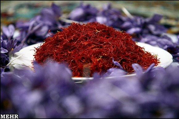 مسئولانی که از صادرات زعفران اصفهان با برند اسپانیا دلخور نیستند
