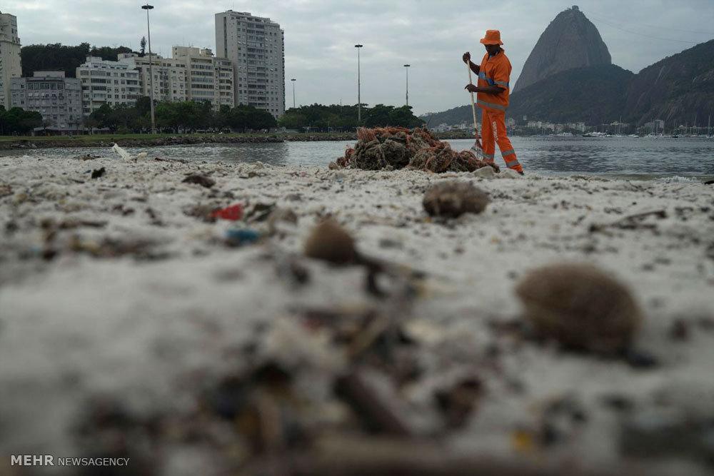 آلودگی آب ساحل ریو