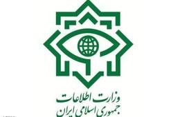 Intelligence seizes fugitive Takfiri terrorists