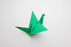 728px-Make-an-Origami-Flapping-Bird-Step-12-preview.jpg