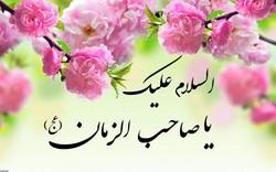 حضرت امام مہدی (عج) حضرت فاطمہ (س) کی اولاد سے ہوں گے اور ان کا ظہورآخری زمانہ میں ہوگا