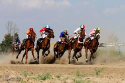 هفته قهرمانی کورس اسبدوانی تابستانه بندرترکمن