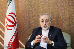 Salehi invites World Nuclear Association to watch JCPOA