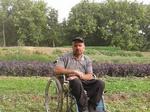 باغبانی که با «ویلچر» درختکاری میکند